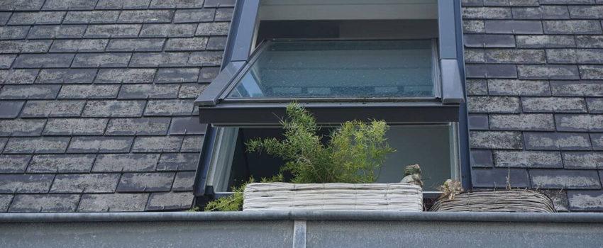 Czym się kierować w trakcie wyboru okien dachowych